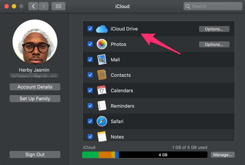 Accessing iCloud Drive on a Mac