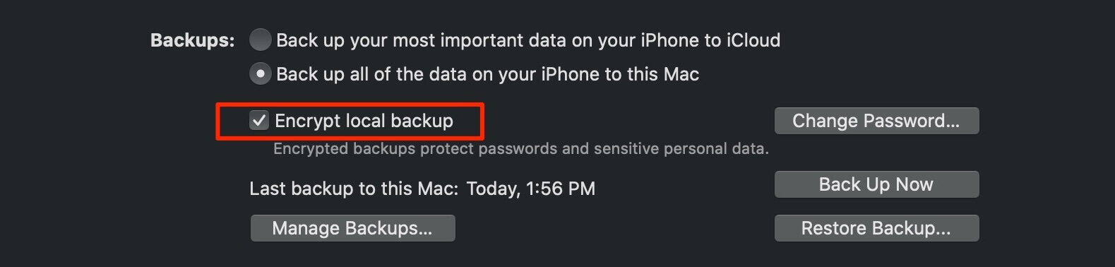 encrypt local iPhone backup