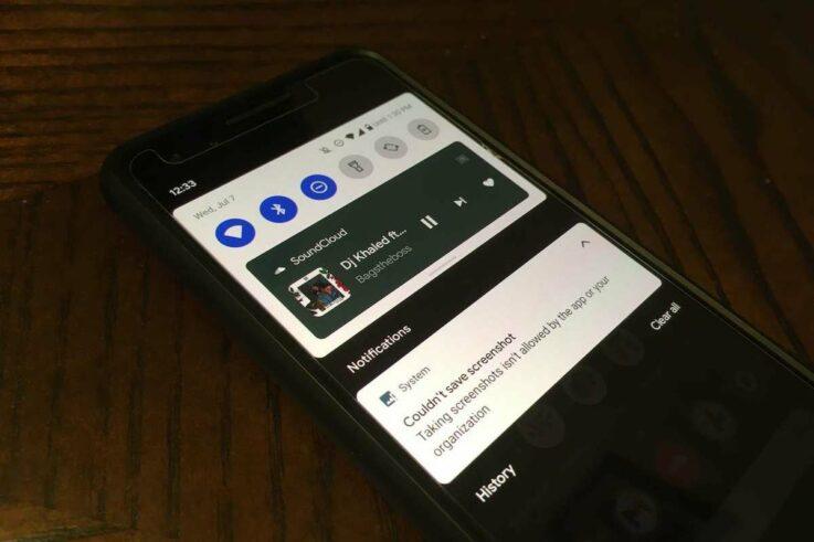 screenshot not allowed by app